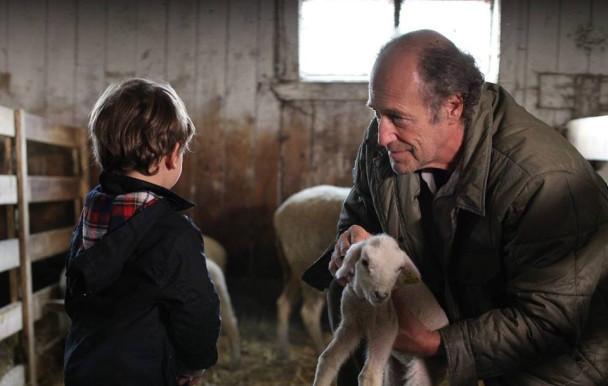 Les films québécois sont à l'honneur au Ciné-Campus