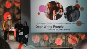 Hollywood et la représentation de la diversité