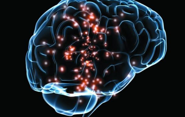 Baccalauréat en neuroscience cognitive  à la fine pointe technologique