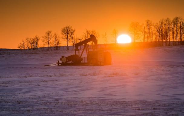 Pour sortir l'UdeM des énergies fossiles