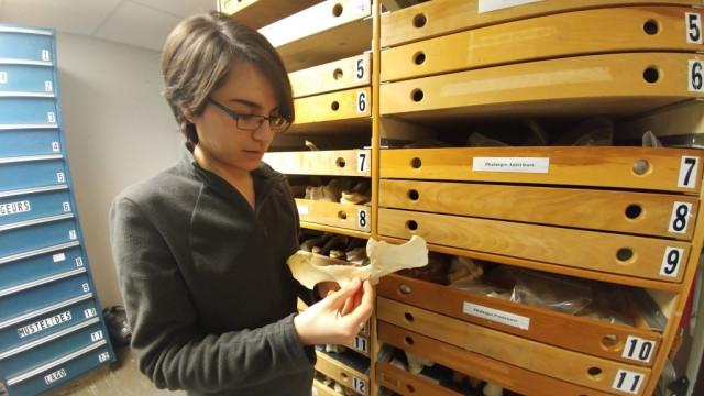 Une étudiante repousse de 10 000 ans l'arrivée de l'homme au Canada