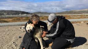 Le Refuge vétérinaire de l'UdeM reçoit un don de 35 000$