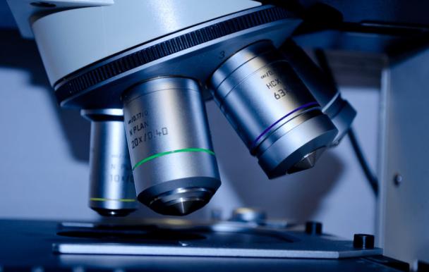 L'UdeM reçoit 2 millions de dollars pour financer ses projets de recherche