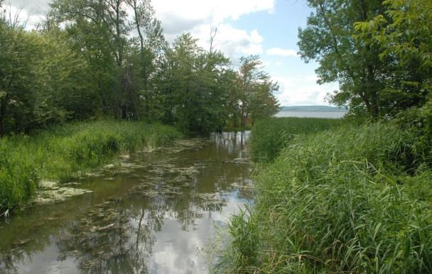 Un parc national pour Montréal