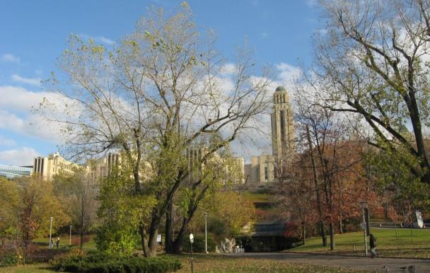 Un campus « équitable ? »