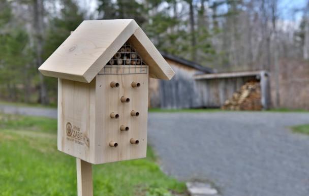 Les premiers nichoirs pour abeilles sur des panneaux publicitaires à Montréal