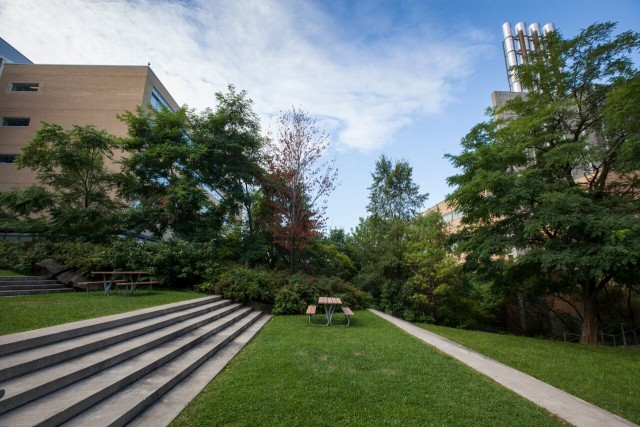 Escalier vert -- Devant les pavillons Marcelle Coutu et Jean-Coutu se trouve un espace en paliers où se mélangent le béton, l'acier et les végétaux. Un endroit vert bien aménagé, idéal pour se détendre.