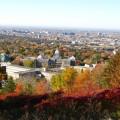 La Clinique juridique de la Faculté de droit de l'Université de Montréal offre un service de consultation juridique aux membres de la communauté universitaire et de ses écoles affiliées. Photo : Flickr/UdeM.
