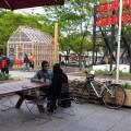 Les Jardins Gamelin, initiative d'aménagement éphémère de Pépinière et Co, animent le centre-ville de Montréal depuis 2015. Crédit photo : Flickr/Eva-Marie Neumann.