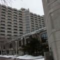 Les logements des résidences de l'UdeM sont répartis à travers trois pavillons, le 2350, boulevard Édouard-Montpetit, le 2442, boulevard Édouard-Montpetit et le pavillon Thérèse-Casgrain. Crédit photo : Mathieu Gauvin.