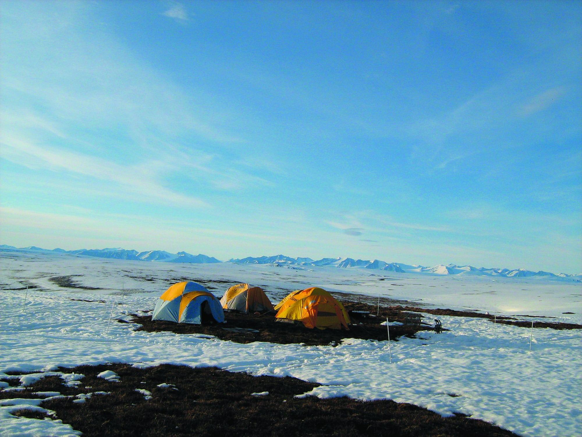 Camp temporaire de l'équipe renard, composé de deux tentes individuelles (une par personne) et d'une tente commune. Crédit photo :  Courtoisie Sandra Lai.