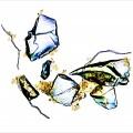 La photo « Liaison improbable » illustre des conglomérats formés de contaminants (marron), de verre concassé et de fibre de cellulose de papier hygiénique, qui favorisent la précipitation des contaminants lors du traitement des eaux usées. (Photo : Mathieu Lapointe)