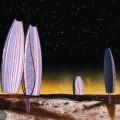 Les étudiants Louis-Éric Daignault, Félix Krauth, Christophe Leick et Jean-François Martel ont remporté le troisième prix du premier concours. Ils ont proposé de transformer l'atmosphère de la planète Mars en la polluant pour la rendre viable, c'est-à-dire en réfléchissant les rayons solaires à travers des structures géantes. (Crédit: Initiative Xenos)