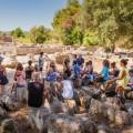 Les étudiants visitent le site d'Olympie, un centre religieux qui a accueilli les Jeux olympiques durant l'Antiquité. (Crédit photo : Courtoisie UQAM)