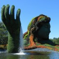 Le Jardin botanique de Montréal a entrepris une démarche de sensibilisation pour la préservation des milieux humides. Crédit photo : Breaktime, Pixabay.