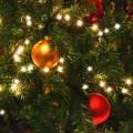 Le service de paniers de Noël est également disponible sur le campus de Laval. Crédit photo: pxhere.