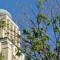 StudiUM est propulsé par le logiciel libre Moodle, utilisé par la majorité des établissements universitaires québécois. (Crédit photo : Archives Quartier Libre)