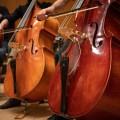 La qualité sonore des instruments à corde comme les contrebasses est moins étroitement liée à l'étiquette de prix que pour d'autres instruments tels que les pianos, estime le chef d'orchestre Jean-François Rivest. Crédit : Jacob Côté