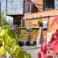 Le vernissage du 21 septembre dans les jardins du campus MIL a mis en images le travail du photographe Martin Matteau, qui a illustré le travail participatif que la communauté de Shawinigan a effectué en mai dernier (crédit Jacob Côté).
