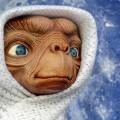 """""""E.T. fait partie des bons scores de John Williams. Il est extrêmement bien ficelé et réalisé"""", dit le chef d'orchestre Jean-François Rivest. John Williams a signé les bandes sonores de grand nombre de films : notamment de Steven Spielberg, dont la série Jurassic Park, Empire of the Sun et plus récemment The Post, en 2017. Photo : Pixabay.com"""