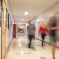 L'Université de Montréal et l'UQAM sont les seules institutions qui offrent une formation en enseignement de l'ECR. Crédits : Jacob Côté